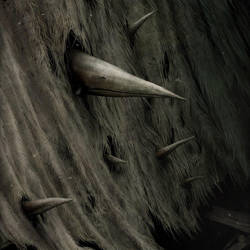 Beaks by Gloom82