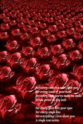 For Every Rose by Vesil
