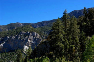 Mt. Charleston IX by quick-with-fear