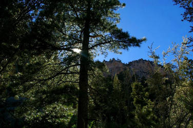 Mt. Charleston XII by quick-with-fear