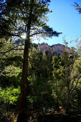 Mt. Charleston XIII by quick-with-fear