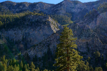 Mt. Charleston XV by quick-with-fear