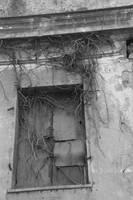 Creepy Window Stock by Judith-la-Brunette