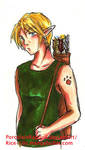 Bad Ass Link by Rice-Lily