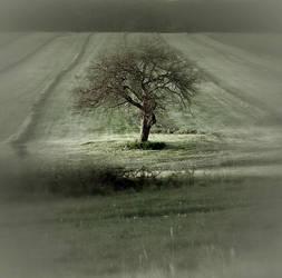 I Talk To The Wind  III by chrzaszczwtrzcinie