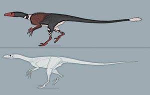 Prepare to be Ornitholested by Kazanlak10