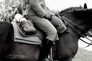 cavalry saddle by silvena