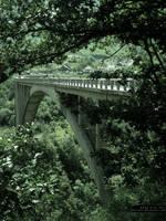The Bridge by xTernal7