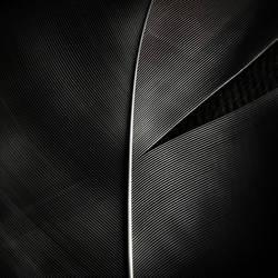 Feather ll by digitaldreamz666