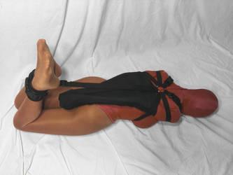 Darlex Armbinder Hogtie by bondagewebbing