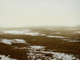 Swamp 2 by Kechake-stock