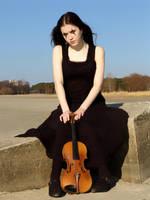 Harlequin Violin 34 by Kechake-stock