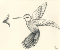 Hummingbird For K 05 by DubiousLogik
