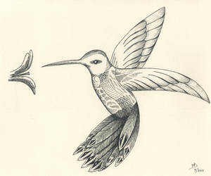 Hummingbird For K 05 by DubiousLogik