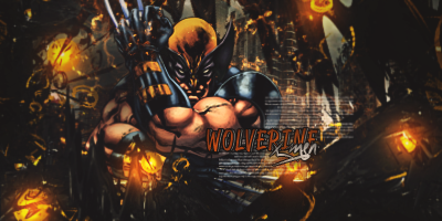 Wolverine copy by bebero
