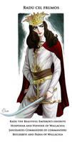 Radu cel Frumos the commaner of commanders by Elveo