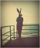 bug and bunny by hayalpriest