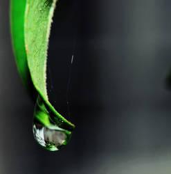 Emrald Tear by Hydrodynamik