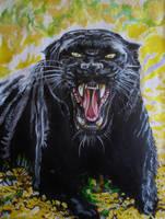 Panther by BikerDA
