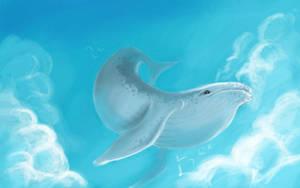 Sky Whale by jhersh064
