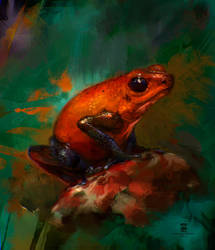 20150904 Frog Psdelux by psdeluxe