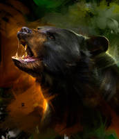20150904 Bear Psdelux by psdeluxe