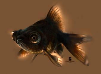 20160523 Black Goldfish Psdelux by psdeluxe