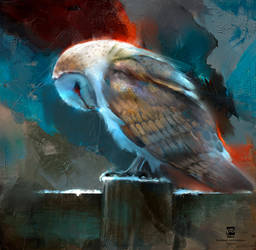 20160826 Owl Psdelux by psdeluxe