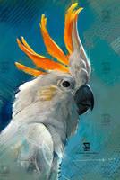 20161122 Cockatoo Bird Psdelux by psdeluxe