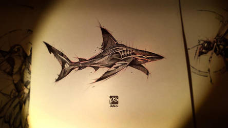 Shark Sketch Psdelux by psdeluxe