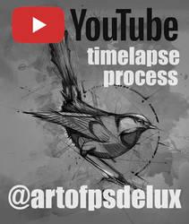 20171016 Bird Timelapse Process Psdelux by psdeluxe