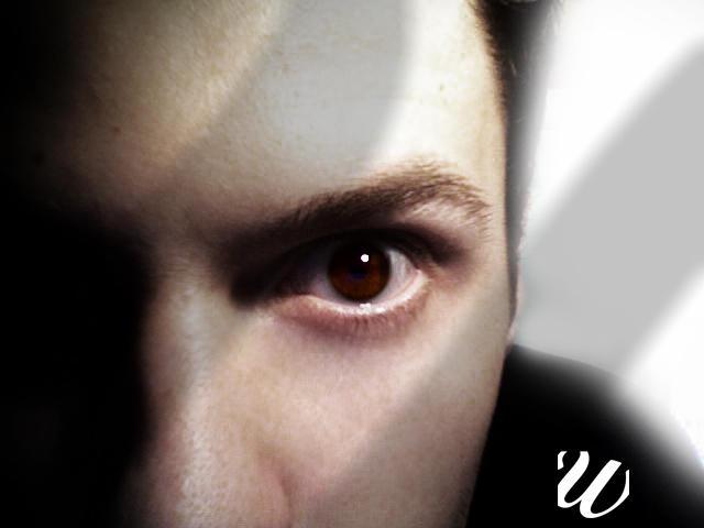 WillemWorks's Profile Picture