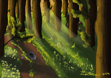 Forest by Braweria