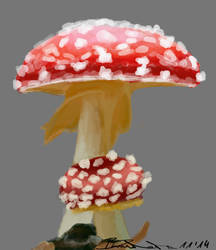 Fly Agaric by Braweria