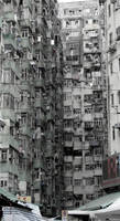 Urban Jungle by creativehouse