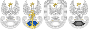 Polish Military Emblemes by TiltschMaster