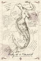 A Study of a Mermaid by MAReiach