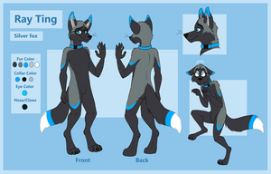 Commission - Ray Ting - Reff Sheet by Vicnor
