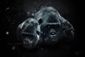 Mr Gorilla by zinkai