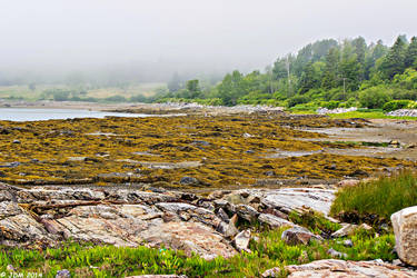 The Maine Coast by JDM4CHRIST