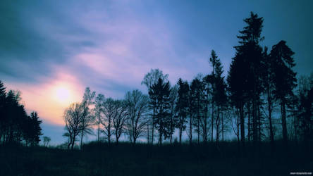 .:Waechter der Nacht:. by Frank-Beer