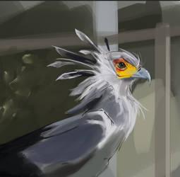 Practice Paint #8743 by DeltaFiveZeroFive