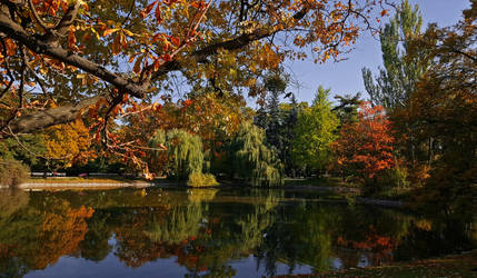 Autumn V by IdisM