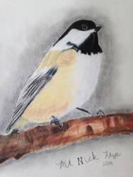 Chickadee by MrN22