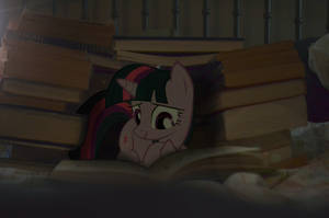 Book Fort by Oppositebros