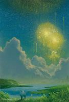 Fireworks of firefly Pass by Ebineyland