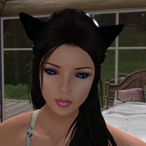 Webmist's Profile Picture