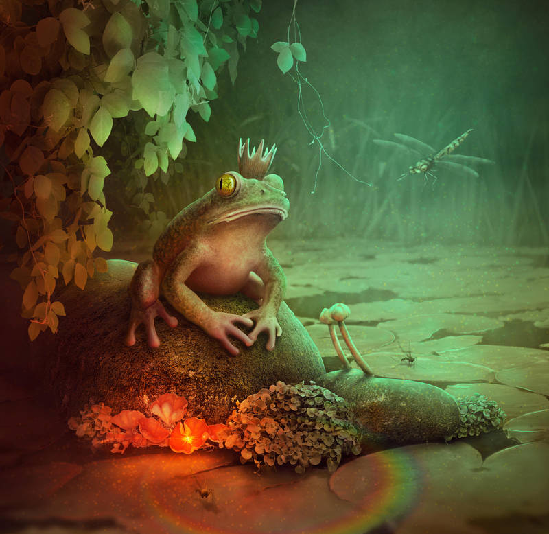 King Frog and the Magic flowers by adrianamusettidavila