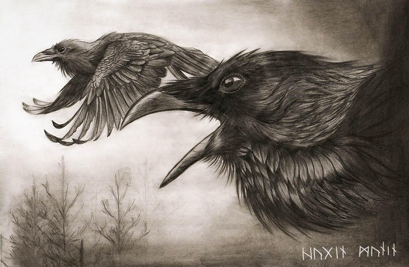 Hugin and Munin by Chickenzaur