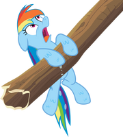 Soaked Rainbow Dash Vector by Thorinair